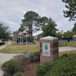 Lakecrest Forest006