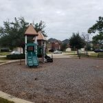 Lakecrest Forest014
