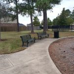 Lakecrest Forest022