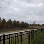 Lakecrest Forest063